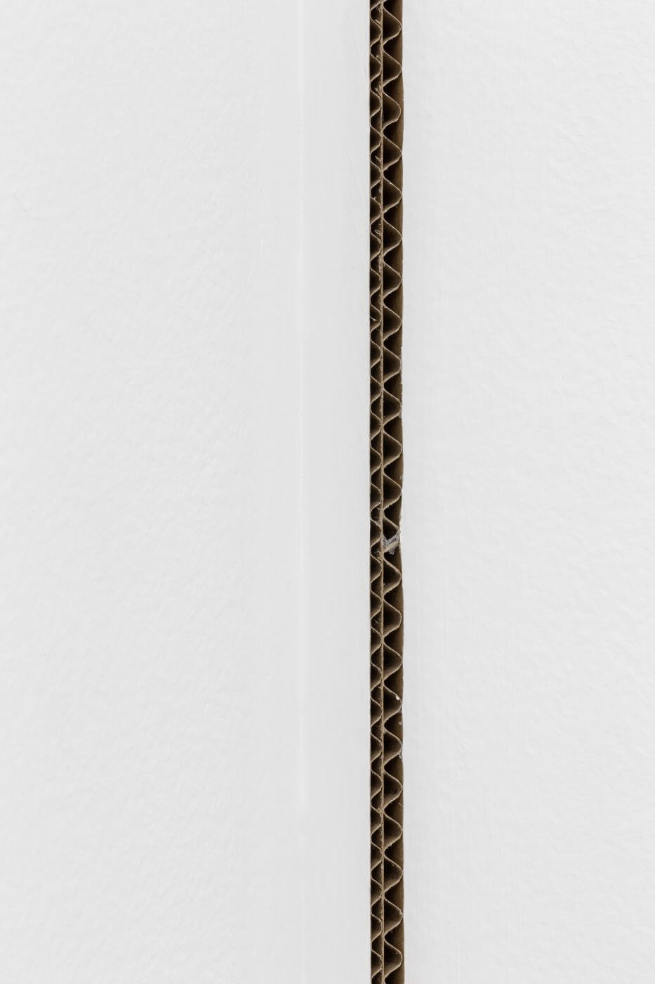 Carlos Bunga, Linha (vertical), 2017 (2021) (detail). Latex and glue on carboard and wall. 286,5 x 0,8 x 3 cm