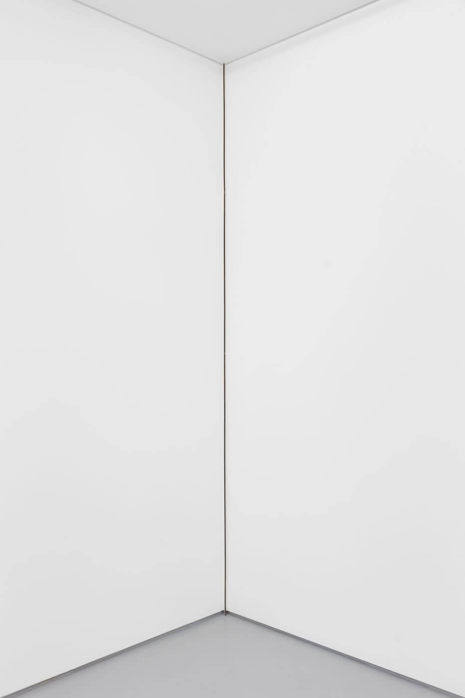 Carlos Bunga, Linha (vertical), 2017 (2021). Latex and glue on carboard and wall. 286,5 x 0,8 x 3 cm