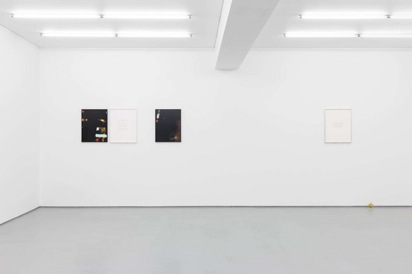 Exhibition view:Portraits (and so castles made of sand melt into the sea eventually), Daniel Gustav Cramer, Galeria Vera Cortês, 2021